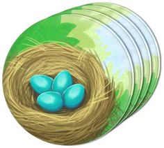 """Amazon.com: Custom & Cool {4"""" Inches} Set Pack of 4 Round Circle """"Flat & Smooth Texture"""" Drink Cup Coasters Made of Acrylic w/ Pretty Robin Egg Bird Nest Nature Design [Colorful Green, Blue & Tan]: Home & Kitchen"""