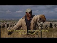 ArtZainak_ Shepherds and Sheep