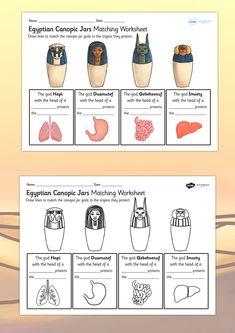 KS2 Ancient Egypt- Canopic Jars Organs Worksheet