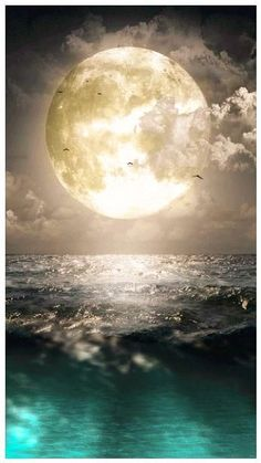 ♥The beautiful moon . inspired by the moon . Moon Pictures, Pretty Pictures, Cool Photos, Moon Pics, Amazing Pictures, Moon Images, Water Pictures, Beautiful Moon, Beautiful Images