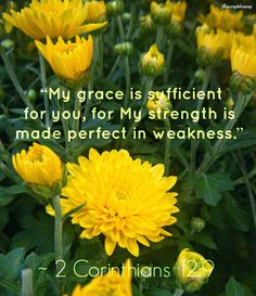 "Flowery Blessing: And He said to me, ""My grace is sufficient for you, for My strength is made perfect in weakness."" Therefore most gladly I will rather boast in my infirmities, that the power of CHRIST may rest upon me. ~ 2 CORINTHIANS 12:9 (NKJV)"