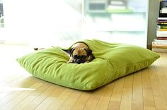 Also love this orthopedic pillow for dogs... looks soooo comfy!