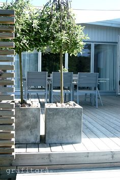 love the trees + concrete planters on deck Outdoor Rooms, Outdoor Gardens, Outdoor Living, Outdoor Furniture Sets, Outdoor Decor, Landscape Design, Garden Design, Beton Design, Outside Living