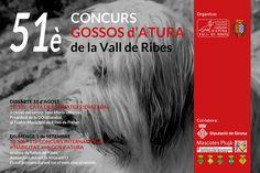 51è Concurs Gossos d'Atura de la Vall de Ribes - 2013