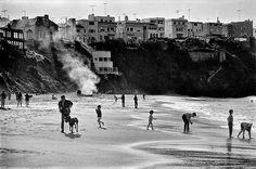 Sea Cliff - Fred Lyon photograph