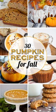 30 Pumpkin Recipes for Fall; they literally all are making my mouth water! I can't wait for fall