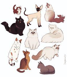 Warrior Cat Drawings, Warrior Cats Art, Cute Cat Drawing, Cute Drawings, Cat And Dog Drawing, Cat Drawing Tutorial, Animal Sketches, Animal Drawings, Cat Sketch