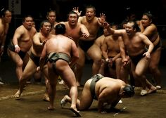 Best pictures of the week: May 8, 2015-Tokyo, Honshu Island, Japan       Sumo wrestlers of the Nishonoseki clan appeal to the winner of a training bout for the next opponent during a joint training session on May 2, ahead of the May Grand Sumo Tournament.