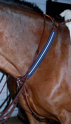 Signature cream and royal blue elastic breastplate with removable running martingale attachment