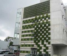 """Sustainable Architecture Takes Cues From the Original Green: Nature    Glass that """"breathes"""" like gills, solar cells that imitate leaves, and other biomimetic technologies  by Blaine Brownell"""