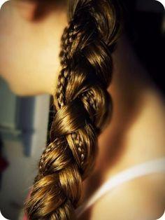 Braidception: braid within a braid.