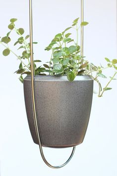 Modern wire plant hanger with earthenware pot, approximately 34 long x 5.5 wide. Hand bent from one continuous piece of heavy-gauge stainless steel, hand finished and polished. Elegant and stylish in your home, office, or indoor garden. Delightful gifts for housewarming, holidays, or weddings!