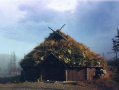 Viking farm in Norway (Navianas Grønne Verden)