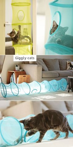 Pets, Home & Garden: Ideal toys for small cats Ikea Hacks For Cats, Cat Hacks, Homemade Cat Toys, Diy Cat Toys, Diy Pour Chien, Ideal Toys, Cat Shelves, Cat Room, Ikea Storage