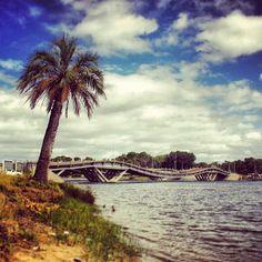 Puente La Barra, Punta del Este, Uruguay.