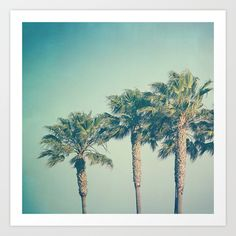 Palms Art Print by Laura Ruth  - $19.00