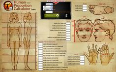 Adult female Proportions http://hpc.anatomy4sculptors