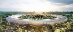 Apple is gearing up for the construction of its new headquarters in Cupertino, California. Steve Jobs proposed plans for the new campus to the Cupertino Norman Foster, Steve Jobs, Sede Da Apple, Apple Campus 2, Apple Headquarters, Foster Partners, New Architecture, Futuristic Architecture, Sustainable Architecture
