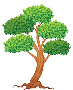 204 Best Tree Clipart Images In 2019 Tree Clipart Tree Leaves