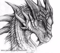 Pencil Drawings Of Dragons Dragon Pencil Art Drawings Of Dragons - Drawing Art Gallery - Drawings Nocturnal Realistic Dragon Drawing, Dragon Tattoo Drawing, Dragon Head Tattoo, Dragon Drawings, Animal Sketches, Animal Drawings, Realistic Drawings Of Animals, Dragon Face, Dragon Sketch