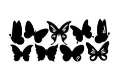 Perhoset (leveys n.