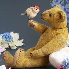 Strunz teddy