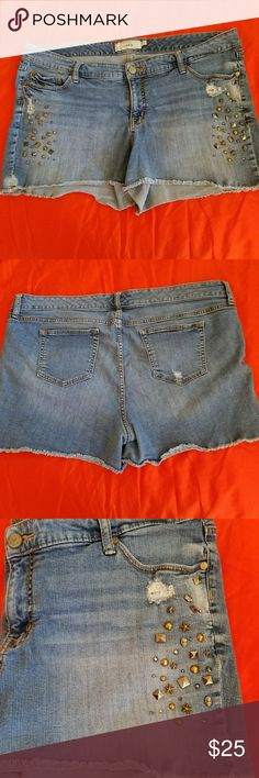 Torrid denim shorts Love the stud detail at the side! A must have for the summer wardrobe! Torrid  Jeans