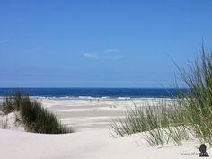 Terschelling, Dunes