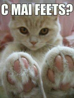 C Mai Feets? Hi 5 to ya! =^.^= <3