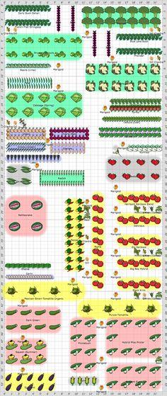 190 Best Garden Plans images | Vegetable garden, Garden ...