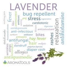 Lavender (Lavandula angustifolia) essential oilhas a wonderful, sweet, floral aroma with herbaceous, balsamic, and woody undertones. The aroma of lavender has been used for many years in sachets, …