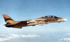 Aerospaceweb.org | Ask Us - Iranian Air Force F-14