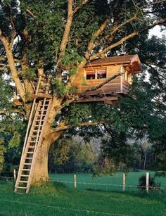 tree house by Spirit Sister, this gives a new meaning to up a tree