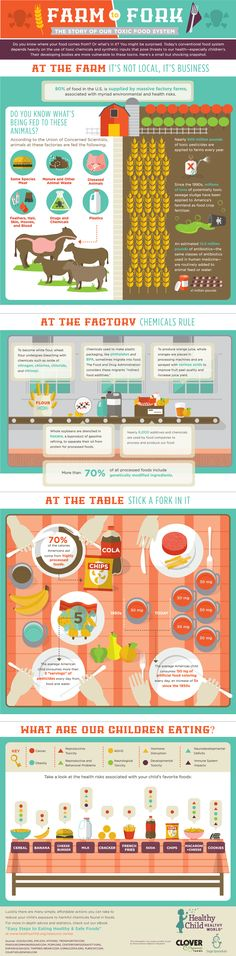 Check out Healthy Child Healthy World's new Farm to Fork infographic and learn the story of our toxic food system! Healthy Kids, Get Healthy, Healthy Living, Healthy Food, Healthy Juices, Dinner Healthy, Eating Healthy, Healthy Cooking, Health And Nutrition