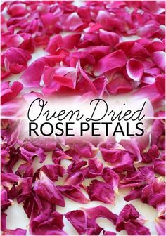 How to dry rose petals for natural body care recipes, crafts, décor and biodegradable confetti. Plus 10 uses. Biodegradable Confetti, Biodegradable Products, Dried Rose Petals, Dried Flowers, Homemade Beauty, Diy Beauty, Rose Petal Uses, Uses For Rose Petals, Homemade Potpourri