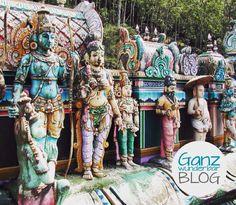 Eine Reise nach Sri Lanka  -Yoga und Ayurveda - eine unvergessliche Symbiose! http://ganzwunderbar.com/2015/09/17/yogareise/  #yoga #reise #srilanka #yogalove #yogainspiration #yogalife #ayurveda #yogareise #indischerozean #ganzwunderbar #2k15