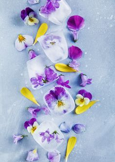Flower Ice Cubes by Linda Lomelino