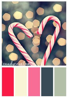 candy cane Christmas color scheme