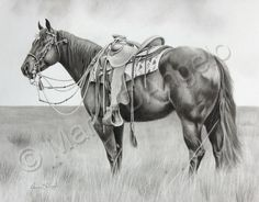 Equine Art by Maria D'Angelo - Horse, children and pet portraits in graphite pencil. Horse Drawings, Realistic Drawings, Animal Drawings, Art Drawings, Pencil Drawings, Arte Equina, Horse Artwork, Horse Paintings, Pastel Paintings