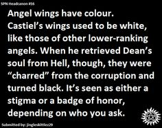 Supernatural headcanon - Angels wings have such a powerful symbolic meaning, it'd be right for them reflect an angel's soul or status.