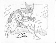 Wolverine by ~Clayton-Henry on deviantART