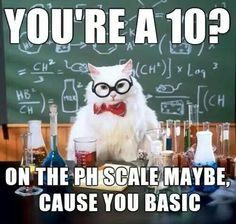 The Absolute Best Of Chemistry CatYou can find Chemistry cat and more on our website.The Absolute Best Of Chemistry Cat Chemistry Cat, Chemistry Tattoo, Chemistry Teacher, Science Cat, Science Puns, Science Experiments, Science Gifts, Science Ideas, Funny Science Memes
