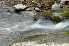 """Love the """"blurr"""" effect of the water"""