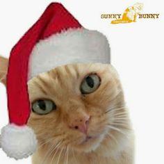 The cutest Santa! www.etsy.com/shop/sunnybunnygardens #organicsoap, #handmadesoap, #etsystore #etsygifts #etsy #naturalsoap #soapbaskets
