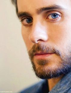 Blue-eyed man with brown hair and a beard stares directly into camera.