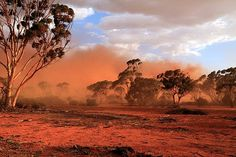 Red dust storm in Australian Outback, Mukinbudin Western Australia Storm Photography, Landscape Photography, Western Australia, Australia Travel, Marrakesh, Casablanca, Australia Landscape, Dust Storm, Banners