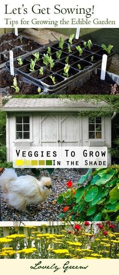 Gardening plans and tips that consider your own needs and situation. Compiled by the Garden Charmers blog network and including some fantastic ideas such as companion planting, Permaculture, square foot gardening, a garden planning computer app, and more! #squarefootgardenplanning