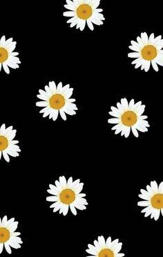 Freebies: 12 wallpapers para o seu celular - My Other Bag Is Chanel Tumblr Wallpaper, Flower Wallpaper, Cool Wallpaper, Pattern Wallpaper, Black Wallpaper, Wallpaper Quotes, Cute Backgrounds, Cute Wallpapers, Wallpaper Backgrounds