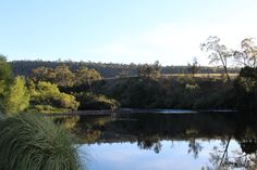 Derwent River - Hayes,Tasmania.