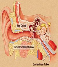"""Very interesting. from """"AutoimmuneGal: Sjogren's and Ear Pain: I thought it was just me"""""""